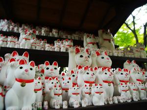 豪徳寺、招き猫.jpg